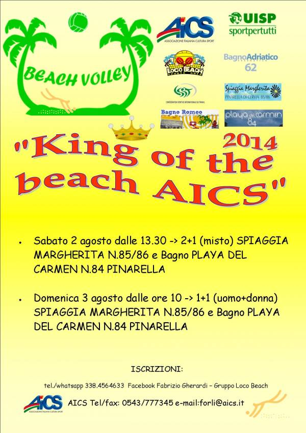 King of the beach aics 2014 - Bagno margherita pinarella ...